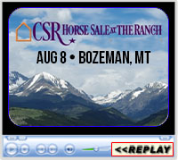 2020 Copper Spring Ranch Performance Horse Sale, Bozeman, MT - August 8, 2020