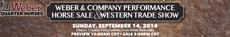 Weber Quarter Horses Performance Horse Sale
